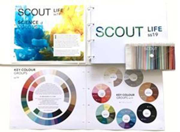 Picture of Scout Online Fashion & Home