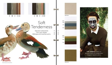 Picture of A+A Concept Colour Trends