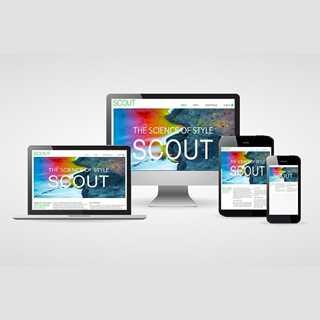 Bild på Scout Women online
